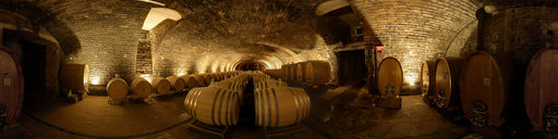 Wine Cellar - Barrique Barrels-  Deidesheim - Palatine - German Wine Street